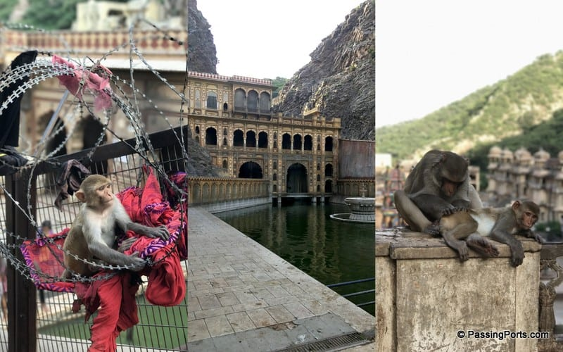 Gaitore Temple in Jaipur
