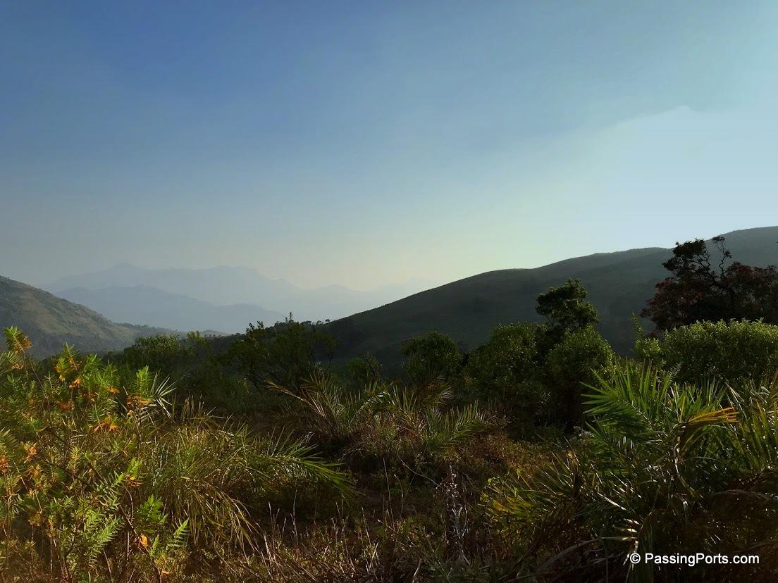 Beautiful Chikmagalur homestay