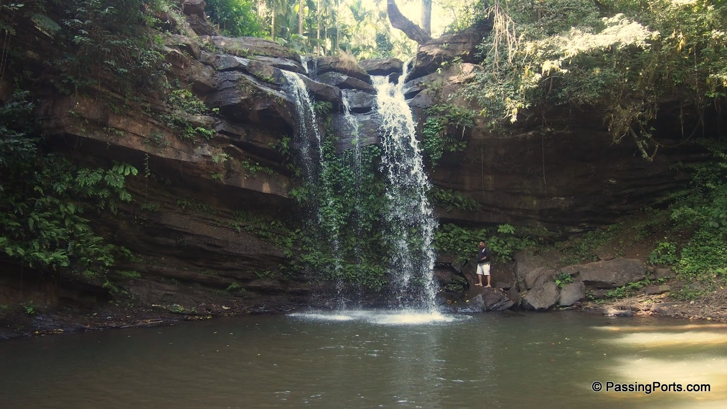 Waterfall near Homestay in Chikmagalur