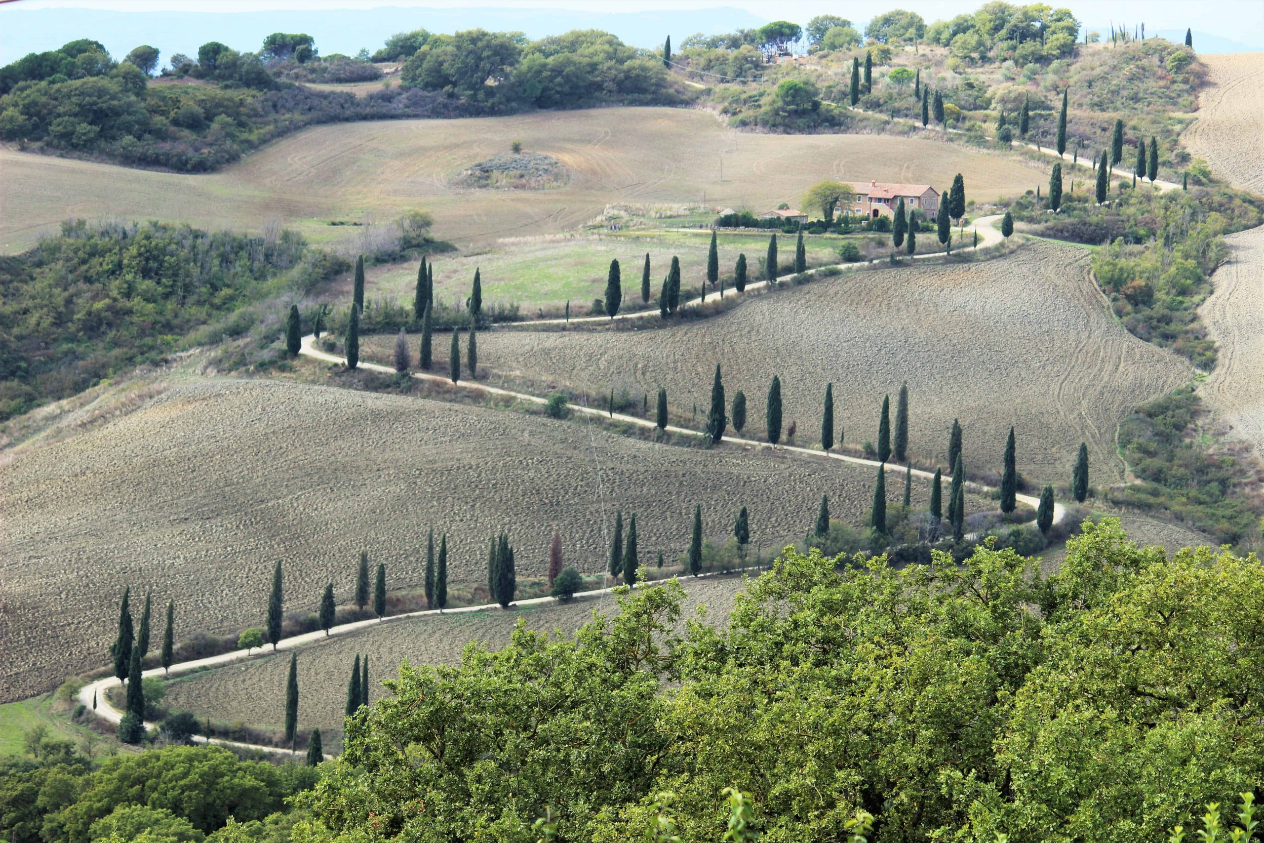 Cypress Lines Roads