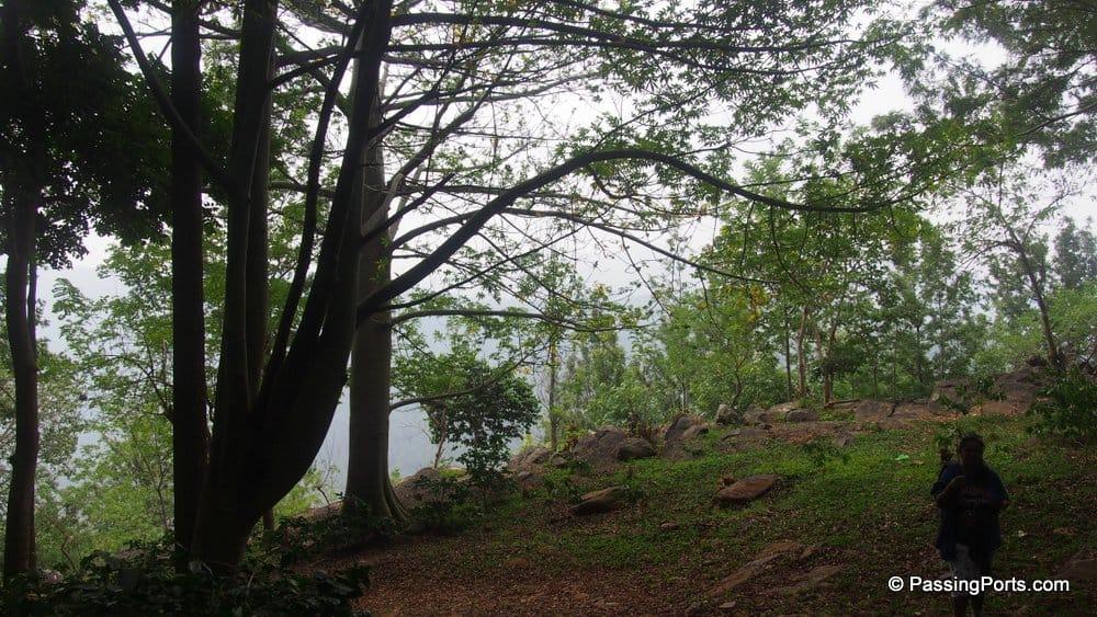 Trek from Water Rock Bungalow